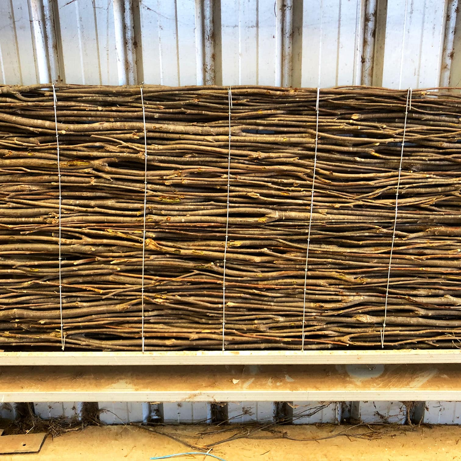 Tightly wound Bowman Brush brushwood panel leaning against a shed wall